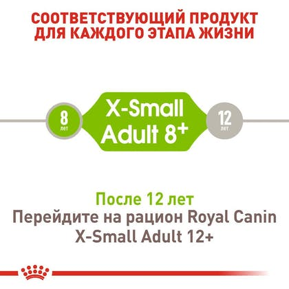 RC-SHN-AdultXSmall8_2-RU.jpg
