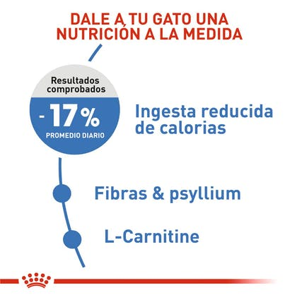 2 - WEIGHT CARE COLOMBIA