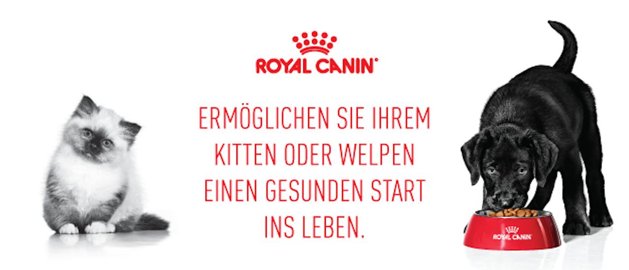 [royalcanin] bis zu 4 kg ROYAL CANIN Tockennahrung für Welpen oder Kitten gratis