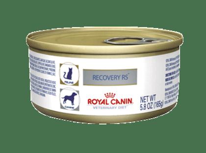 AR-L-Producto-Recovery-Perro-y-Gato-lata-Veterinary-Diet-Feline-Humedo