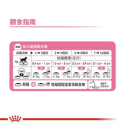 幼貓K36_餵食指南