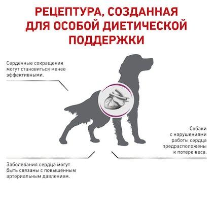 RC-VET-DRY-DogCardiac_rus3