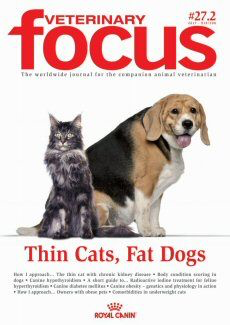 Thin Cats, Fat Dogs