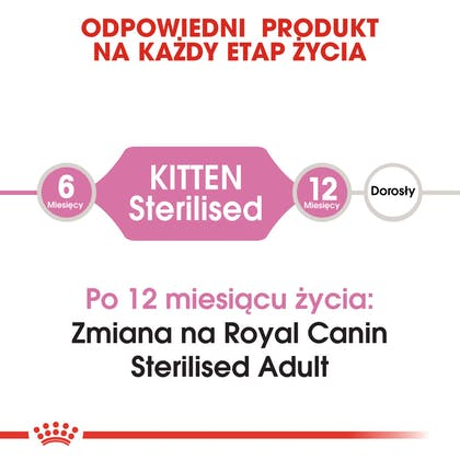RC-FHN-KittenSterilised-CV1_005_POLAND-POLISH
