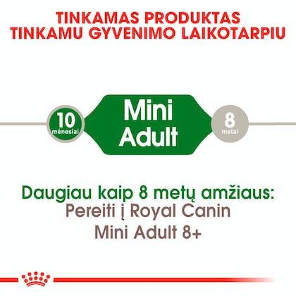 RC-SHN-AdultMini-CV-EretailKit-1-lt_LT