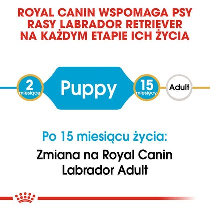 RC-BHN-PuppyLabradorRetriever-CM-EretailKit-1-pl_PL