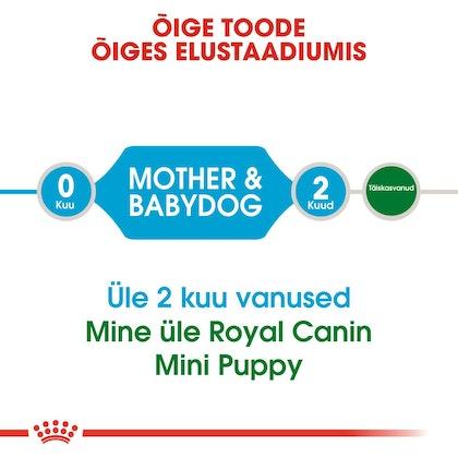 RC-SHN-PuppyMiniStarter-CV1_009_ESTONIA-ESTONIAN