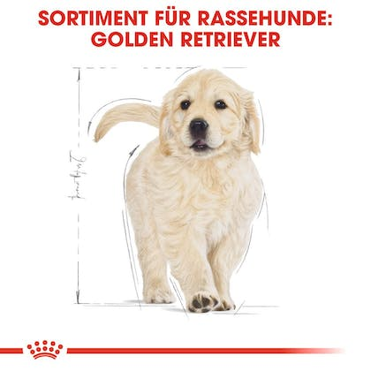 RC-BHN-Puppy-Golden-Retriever-Trockennahrung_Sortiment_DE