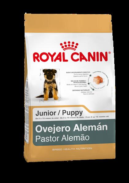 AR-L-Producto-Ovejero-Aleman-Junior-Breed-Health-Nutrition-Seco