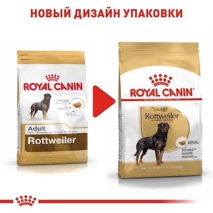 RC-BHN-Rottweiler_5-RU.jpg
