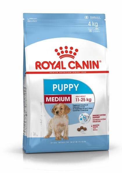 PACKSHOT PUPPY MEDIUM SHN17