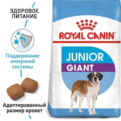 RC-SHN-PuppyGiantJunior_1-RU.jpg