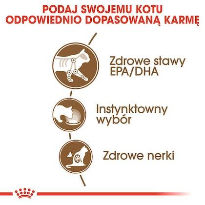 RC-FHN-Wet-Ageing12Gravy-CV-Eretailkit-2-pl_PL