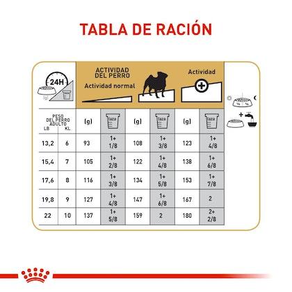 PUG ADULT COLOMBIA 5