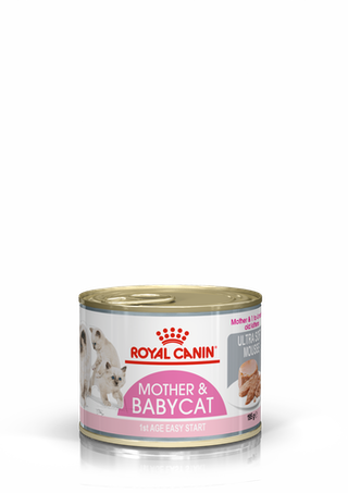 Mother & Babycat Mousse