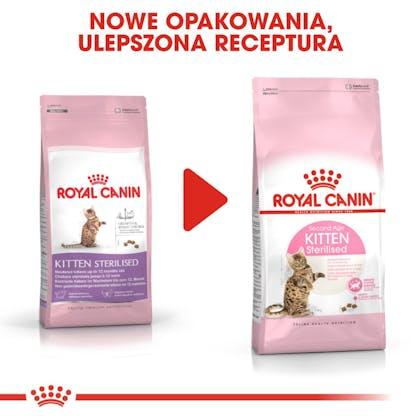 RC-FHN-KittenSterilised-CV8_005_POLAND-POLISH