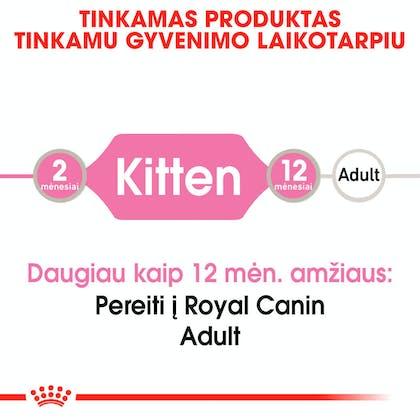 RC-FHN-KittenInstinctiveGravy-CV-Eretailkit-1-lt_LT