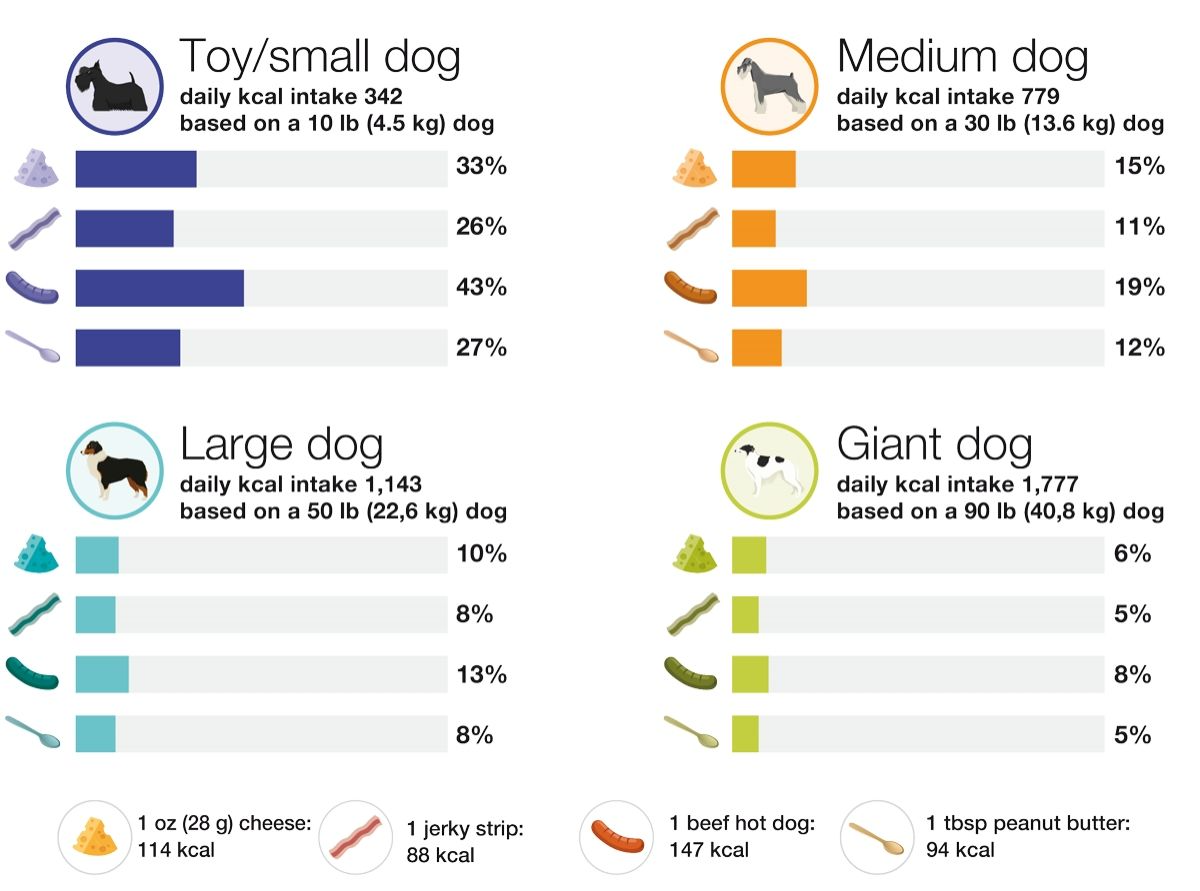 While dogs often receive human food as treats, pet owners may not realize that even in small quantities, human food can represent a large percent of a pet's daily caloric requirement. As a general guideline, treats and human foods should not exceed 10% of total daily calories to avoid nutrient deficiencies and imbalances.