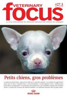 Petits chiens, gros problèmes